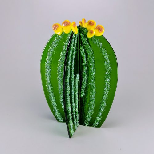 Fused 3-Dimensional Cactus
